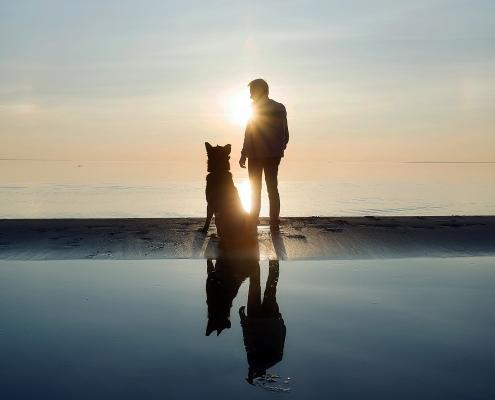 Neue-Wege.dog Hundeseminar Achtsame Begegnung
