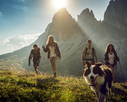 Neue-Wege.dog Hundewanderungen